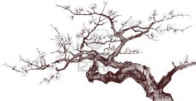 9805806-ilustracion-vectorial-de-un-arbol-de-cerezo-florecimiento-dibujo-original