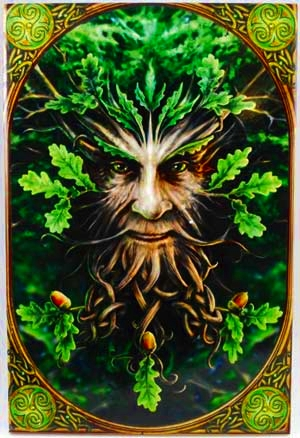 greenmantilelargeannestokes