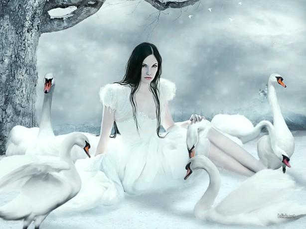 dama_de_los_cisnes-1024x768