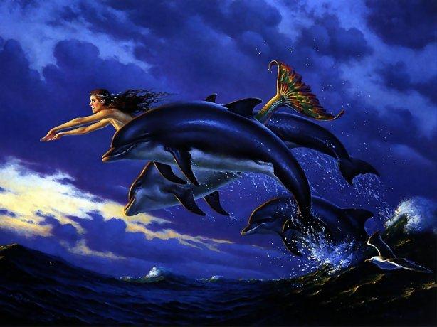 Delfines-Y-Ballenas